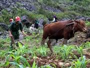 Vietnam asegura el cumplimiento de reducción multidimensional de la pobreza