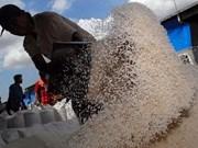 Indonesia importará un millón de toneladas de arroz de Pakistán