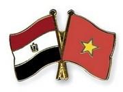 Embajador vietnamita presenta cartas credenciales al presidente egipcio