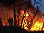 Incendios causan pérdidas por más de 16 mil millones de dólares en Indonesia