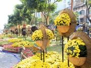 Recorrido de flores embellecerá Ciudad Ho Chi Minh en Año Nuevo Lunar