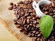 Directora general de Starbucks satisfecha con negocios en Vietnam