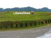Conquistando la montaña Lang Bian