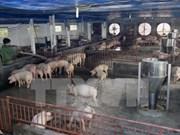 Inauguran granja experimental financiada por el Banco Mundial