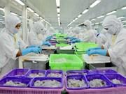 Activo Vietnam en la integración económica internacional