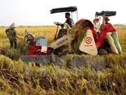 Vietnam aspira a 31 mil millones de dólares de exportaciones agrícolas
