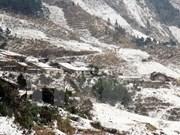 Ola de frío causa estragos en la región norteña de Vietnam