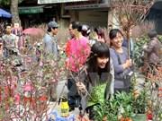 Los mercados de flores en Hanoi
