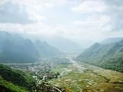 Moc Chau, pradera de cuatro estaciones