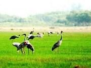 Iniciativa y empeño, claves del éxito del santuario de aves raras Viet