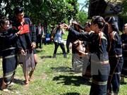 Reviven fiestas tradicionales vietnamitas en ocasión del Tet