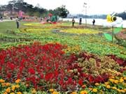 Parque de flores de Da Lat, punto de encuentro de la belleza natural