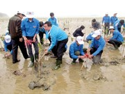 Respuesta activa de jóvenes vietnamitas a la protección ambiental