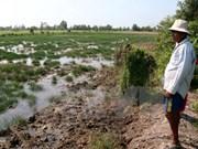 Alertan peligroso aumento de penetración de agua salada