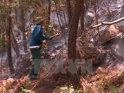 Clima seco eleva alerta de incendios forestales de Vietnam