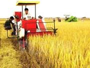 Japón busca oportunidades de inversiones en provincia vietnamita