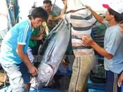 Incrementa Vietnam exportación de productos agroforestales y acuáticos