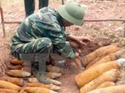 Ayuda a provincia vietnamita en desactivación de bombas y minas