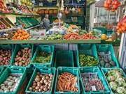 Empresas maltesas buscan fomentar inversión en Vietnam