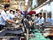 ONUDI respalda a Vietnam en diseño de estrategia del sector industrial