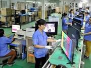 Presidente ejecutivo de Interflour llama inversiones en Sudeste Asiático