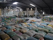 Exportación de arroz aumenta fuerte en febrero