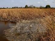 Grave sequía y salinización afecta seriamente a Delta del Mekong