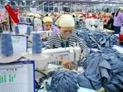 Ocho grupos de exportación ingresan más de mil millones de dólares