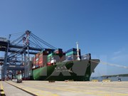 Puerto vietnamita de Cai Mep recibe súper carguero