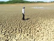 Sequía continúa afectando provincias centrales y sureñas de Vietnam