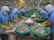Urgen a reanudar exportación de bagres de 13 empresas vietnamitas a EE.UU.