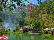 """Misterioso hostal del """"fantasma del bosque"""" en meseta Lam Dong"""