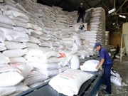Vietnam exportará 1,6 millones de toneladas de arroz en segundo trimestre
