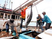 Fijan reglas para envío de trabajadores vietnamitas a Tailandia
