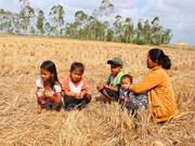 Vietnam llama a apoyo internacional urgente para enfrentar desastres naturales