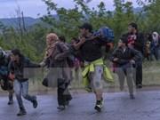Vietnam asiste a la feria de apoyo a refugiados sirios