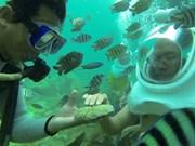 Inician tour de caminata submarina en Quang Nam