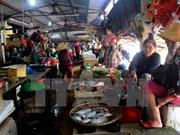Asistencia urgente en Vietnam a pobladores afectados por muerte masiva de peces