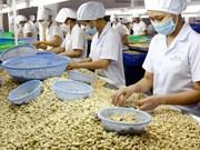 Vietnam se esfuerza por tener un millón de empresas en 2020