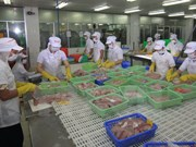 Ciudad Ho Chi Minh aspira 50 millones USD en exportaciones de peces ornamentales