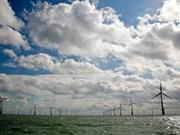 Energía renovable como futuro de industria eléctrica de Vietnam
