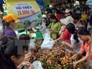 Festival de Fruta sureña resalta valores agrícolas de Vietnam