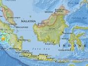 Terremoto de 6,5 grados Richter sacude isla Sumatra en Indonesia