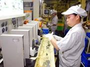 Introducen en Vietnam Fondo de Integración ASEAN- Japón