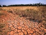 Proponen cooperación con Israel en respuesta al cambio climático