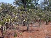 Países europeos estudian desarrollo sostenible de Altiplanicie Occidental