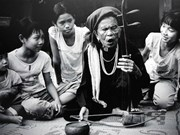 Llevan al mundo música tradicional de Vietnam