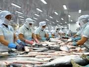 Vietnam alcanza monto millonario por exportaciones de pescado Tra