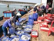 Exporta Vietnam gran volumen de productos agroforestales y acuáticos