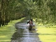 Vietnam trabaja por proteger Parque Nacional de Tram Chim